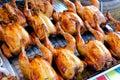 Roast chicken Royalty Free Stock Photo
