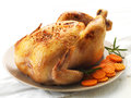 Roast chicken and prepared carrots on plate Stock Image