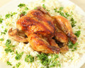 Roast chicken and rice high angle Royalty Free Stock Photos