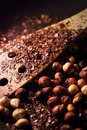 Roast hazelnuts with wooden spoon Royalty Free Stock Photography