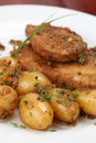 Roast pork with baby potatoes Royalty Free Stock Photo
