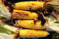 Roasted barbecue corn Royalty Free Stock Image