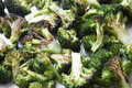 Roasted broccoli florets pieces and sprinkled with kosher salt Royalty Free Stock Photography