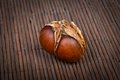 Roasted chestnut an image of marron castanea sativa Royalty Free Stock Photography
