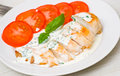 Roasted chicken breast with sauce on plate Stock Images