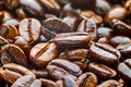 Roasted coffee arabica Stock Image