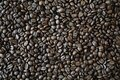 Roasted coffee beans, full frame, background Royalty Free Stock Photo