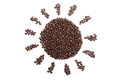Roasted coffee beans in sun shape Royalty Free Stock Photo