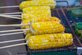 Roasted corn on a charcoal grill closed up Royalty Free Stock Photography