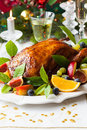 Roasted duck with fruits for christmas Royalty Free Stock Images