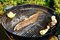 Roasted fish, mushrooms, vegetables on the grill, on a picnic. Royalty Free Stock Photo