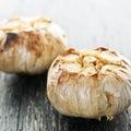 Roasted garlic bulbs Royalty Free Stock Images