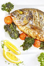 Roasted gilt head bream fish on a white plate. Royalty Free Stock Photo