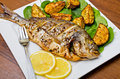 Roasted gilthead fish Royalty Free Stock Photo