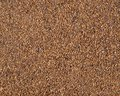 Roasted grain coffee surface can be used as a background Royalty Free Stock Images