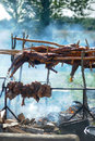 Roasted lamb carcass of a sheep on vertle Royalty Free Stock Photo