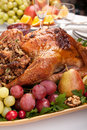 Roasted stuffed holiday turkey Stock Images