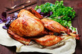 Roasted Turkey. Thanksgiving table served with turkey, decorated with greens and basil on dark wooden background. Homemade roasted