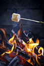 Roasting Marshmallow Stock Photos