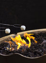 Roasting marshmallows over the fire two a flaming pit outdoors at night Stock Photography