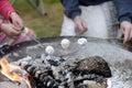 Roasting marshmallows Royalty Free Stock Photo