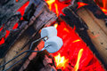 Roasting marshmallows for smores over an open campfire Royalty Free Stock Photo