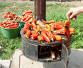 Roasting red paprika  for winter provisions Stock Image