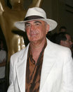 Robert Shapiro Royaltyfri Bild