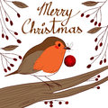 Robin with red bauble cute little bird holding beak in christmas day Royalty Free Stock Images