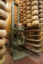 Robot in a maturing storehouse of parmesan cheese Stock Photo