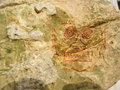 Rock Art abstract Stock Photo