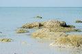 Rock on beach at huahin thailand Royalty Free Stock Photo