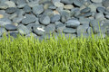 Rock bed with grass Royalty Free Stock Photo