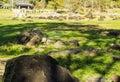 Rock at fang hot springs mae national park mon pin Royalty Free Stock Photography