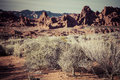 Rock Formations in the Valley of Fire Royalty Free Stock Photo