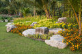 Rock garden decorated with palm trees and flowers Stock Image