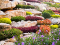 Rock garden the decoration of rocks and gardening plants Royalty Free Stock Image