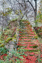 Rock garden at the german village sanspareil in bavaria europe taken in late autumn october Royalty Free Stock Photos