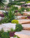 Rock garden with small trees planted between them give a sense of beauty Royalty Free Stock Photography