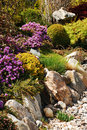 Rock garden in spring Royalty Free Stock Photos