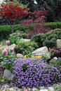 Rock garden in springtime flowers nicely planted and tended with perennials and ornamental trees full bloom the spring Stock Photography