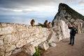 Rock of gibraltar tourist taking photo monkeys on the Stock Photos