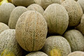 Rock melon Royalty Free Stock Image