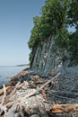 Rock near the high ashore trunks of trees snags garbage Royalty Free Stock Photos