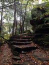 Rock Stairs curving into the woods