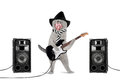 Rock star cat Royalty Free Stock Photo