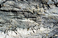 Rock surface in black and white Royalty Free Stock Photography