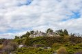 Rockery alpine garden in kyiv botanical garden Royalty Free Stock Photo