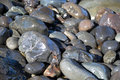 Rocks on beach Royalty Free Stock Photo