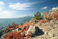 Rocks on the Black sea coast in autumn Royalty Free Stock Images